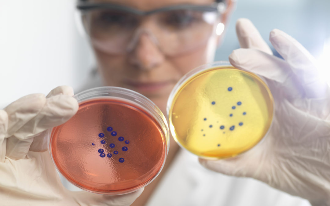 New research reveals Australia's multi-billion dollar superbug crisis